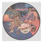 "12"" Picture Disc Sleeves"