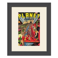 Matted Comic Frame Kit. Silver/Golden Age