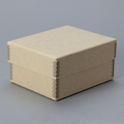 CARTES De VISITE Card Storage Box 3 1 8 X 5 6 4 Outside 40 Pt Acid Free Lignin Unbuffered Board Holds Up To 90 Carte Visite
