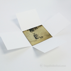 Four Flap Glass Plate Negative Enclosure