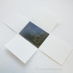 Four Flap Glass Plate Negative Enclosure for 5 x 7