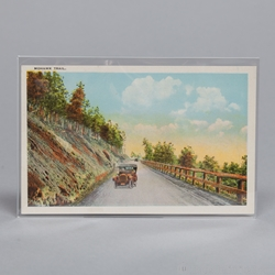 Mylar REGULAR Postcard Sleeve