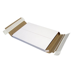 DVD Mailer - Holds 1 DVD Case