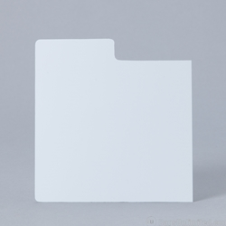 Plastic divider card for CD display.