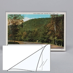 REGULAR Postcard 'L Seal' Sleeve
